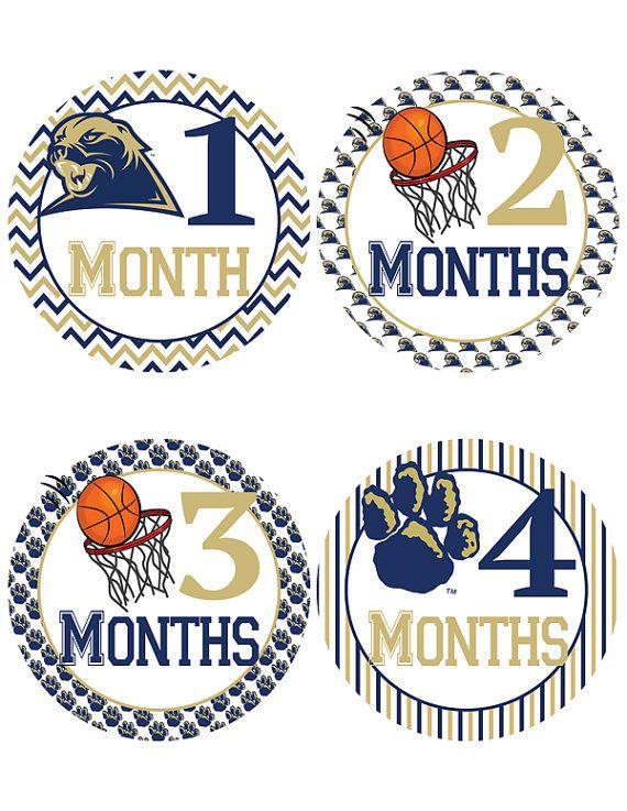 University of Pittsburgh Panther Basketball by iDesignsbyKathy