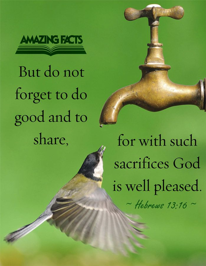 But to do good and to communicate forget not: for with such sacrifices God is well pleased.  Hebrews 13:16