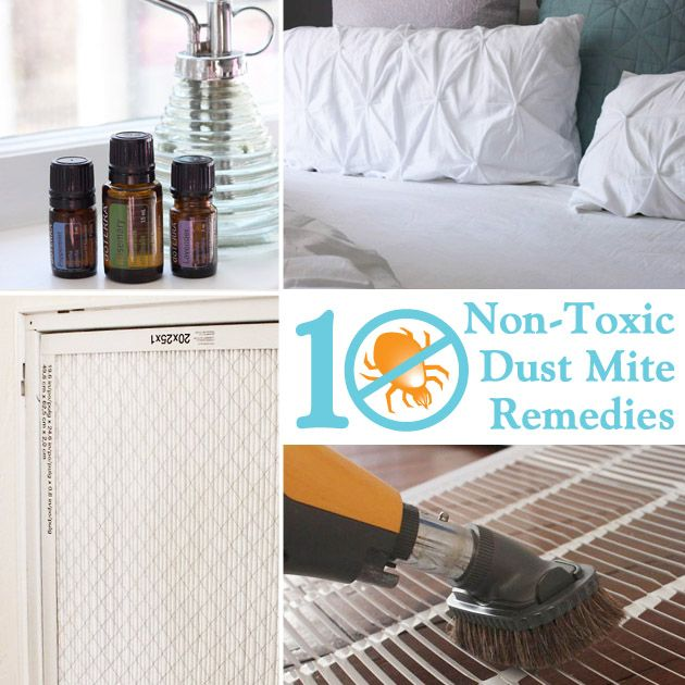 10 Non-Toxic Dust Mite Remedies for the Home - Controlling dust might seem like the obvious solution to dust mites, but actually there are several specific things you need to do to control the actual mites.