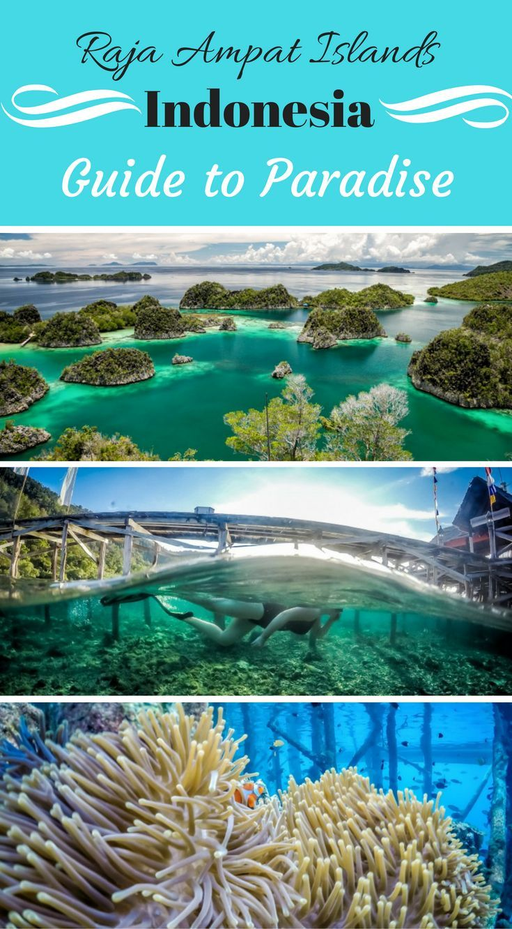 Raja Ampat Islands Indonesia, Guide to Paradise. The Raja Ampat is an archipelago made up of over 1,500 small islands, cays and shoals surrounding the four main islands of Misool, Salawait, Batanta and Waigeo. Click to read more at http://www.divergenttravelers.com/raja-ampat-islands-indonesia/