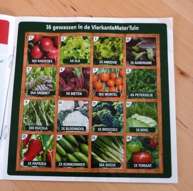16 gewassen in de vierkante meter tuin