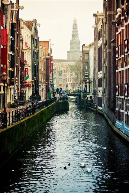 Amsterdam beauty......