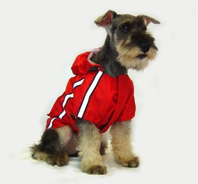 Protect your dogs from the rain and mud with this fantastic sporty Reflective Jacket Rain Coat by Dog Bless You. Perfect for evenings or dark days. Available in different sizes!