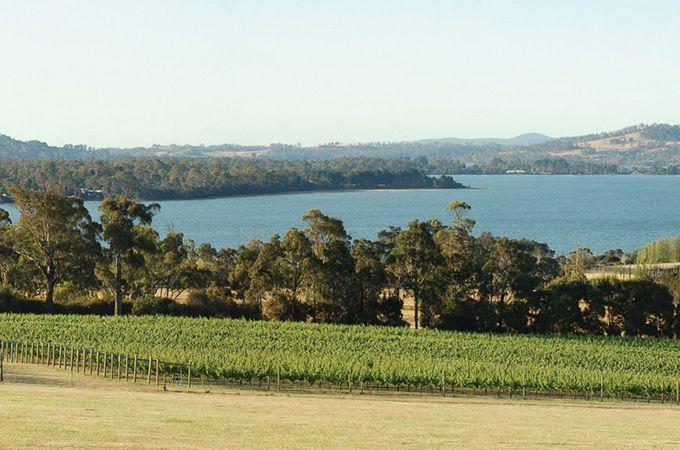 Native Point Wines – Image courtesy of Tourism Tasmania and Bret Salinger