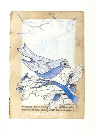 Blå fugl - A4 Signert trykk