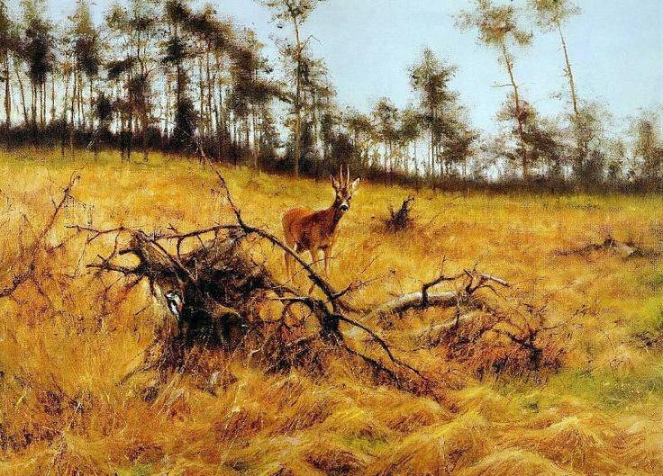 Poortvliet Rien nature 193 Sun, Автор: Poortvliet, Rien