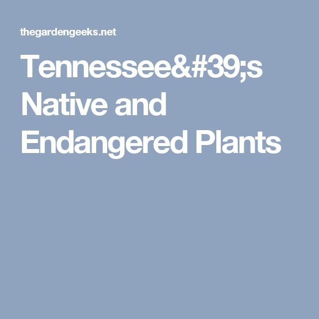 Tennessee's Native and Endangered Plants