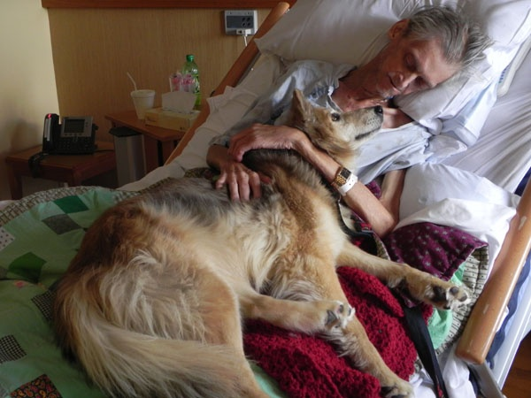 A homeless man's last wish was to see his dog one more time. Yurtie, a female dog used to live with Cedar Rapids 57 year old Kelvin Mc Clain in his car.    Unfortunately, Kevin became ill with lung cancer. Hospice employees say it was the most touching moment ever. And it was their last time together. Kevin died shortly after he met the dog. Yurtie how lives with a new family.