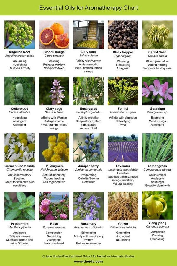 Soft image inside printable list of essential oils and their uses