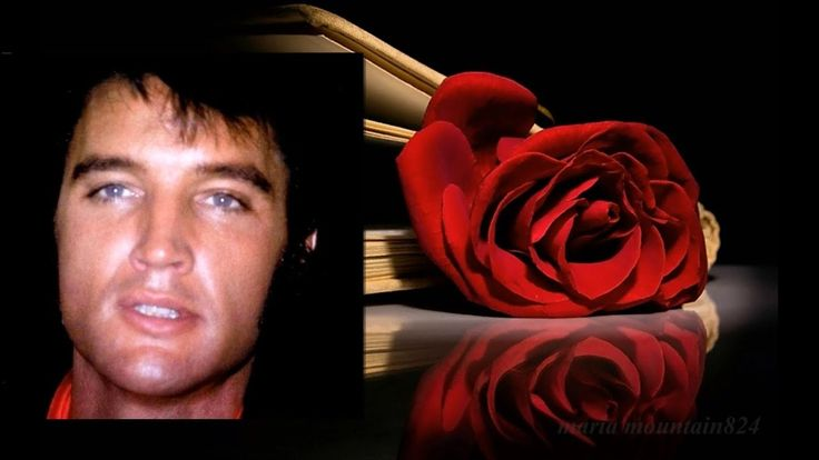 Elvis Presley - Mama Liked The Roses (with Elvis singing harmony vocal) ... (With images ...