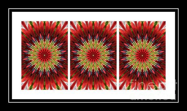 Strawberry Explosion Triptych - Kaleidoscope by Barbara Griffin.