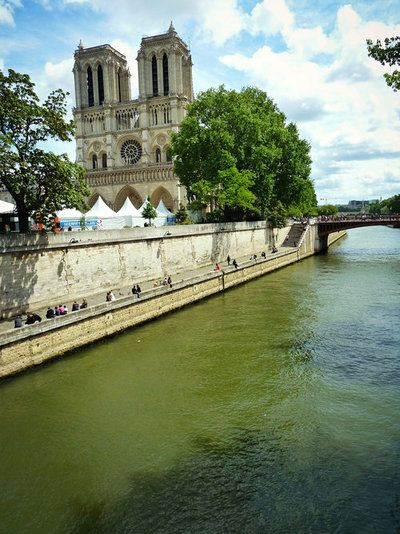 Notre Dame // Paris, France