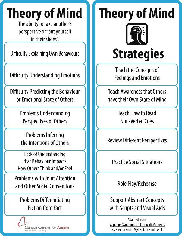 Theory of Mind Strategies