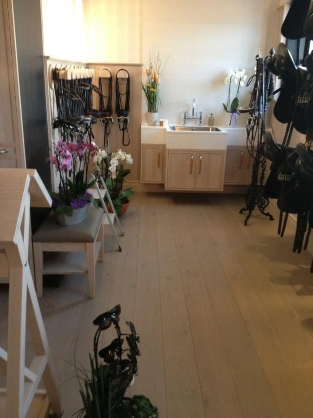 Tack Room Orchids In A Tack Room What A Concept