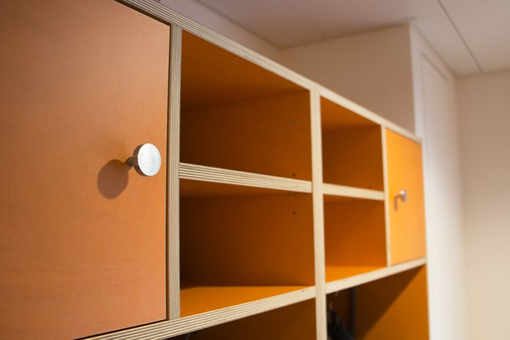 Decorative birch plywood makes great material for shelves and cabinet doors.
