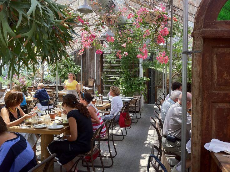 local organic vegetarian eating   main  styers garden cafe delightful dining