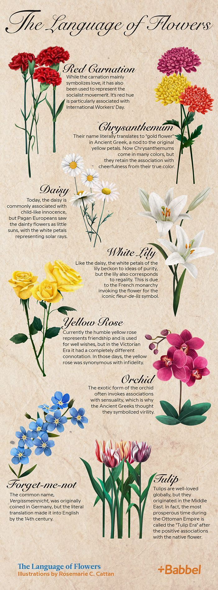 Language of flowers, 1884 Природа, Орнаменты