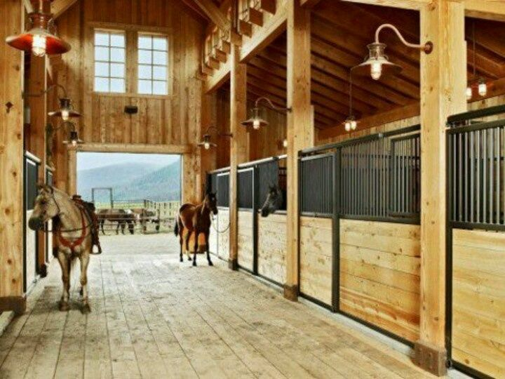 1000 images about horse barns arenas on pinterest horse barns stalls and horse barn designs - Horse Stall Design Ideas