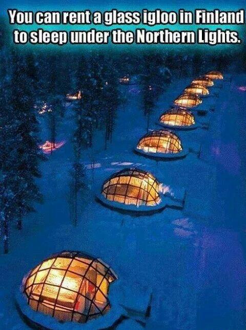 Finland, northan lights igloos