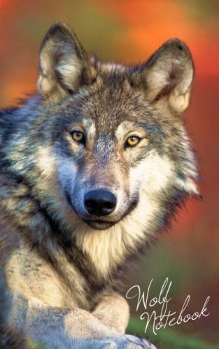 Wolf Notebook: Gifts & Presents - Gray / Grey Wolves Ruled Notebook for Wolf lovers (Animal Series)