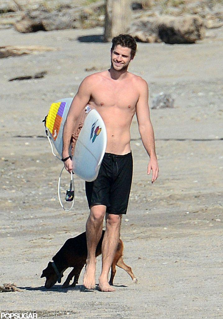 Liam Hemsworth Dog Breed