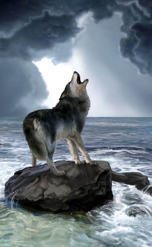 "Wolves:  ""Singing in Dead Languages,"" by MoonsongWolf, at deviantART. #Wolf."