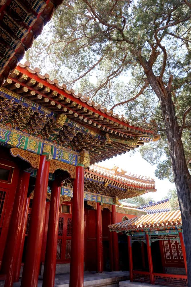 The beautiful wooden buildings of the Forbidden City, Beijing