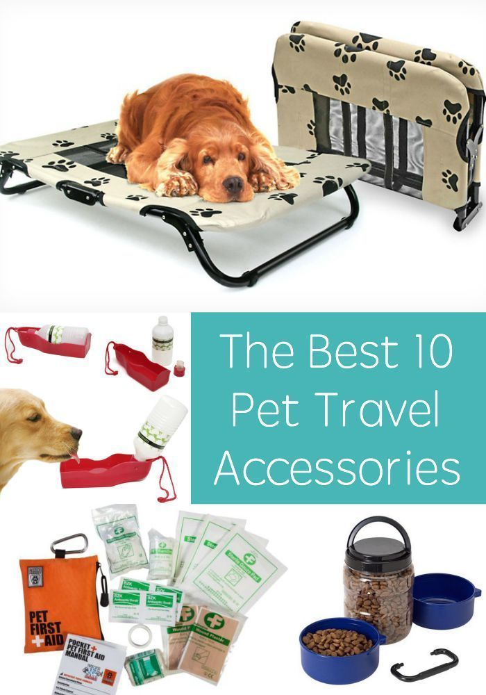 Traveling with pets can be stressful if you aren't prepared - here are my 10 favorite pet accessories to make your trips easier!