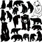аннотация,животное,искусство,справочная информация,медведи,салон красоты,большой,черный,плотоядное животное,мультфильм,коллекция,мило,фронт,графика,гризли