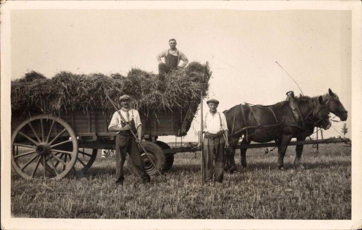 CPA KODAK attelage chevaux ferme champs charrue paysan blé foin moisson métier