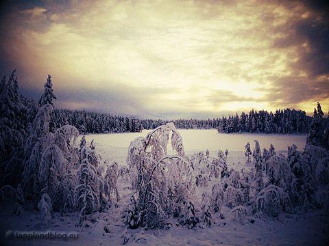 Im Griff der Kälte - Der Winter wurde geliefert