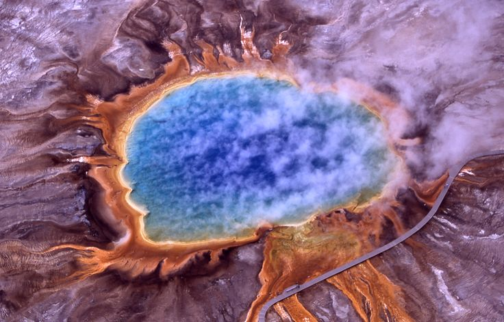 Asgard Archaea Hint at Eukaryotic Origins A newly discovered superphylum of archaea may be related to a microbe that engulfed a bacterium to give rise to complex eukaryotic life.