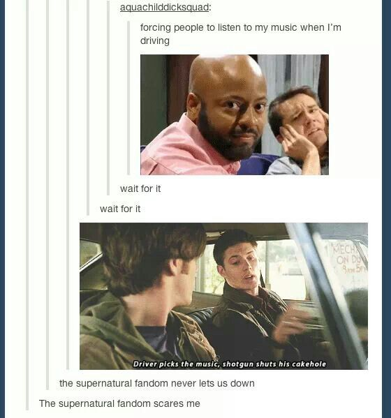 I just can't even contain my laughter. We have a GIF for literally every situation tumblr could get into.
