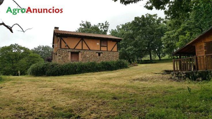 Venta de Finca forestal con casa y bungalow en Ávila