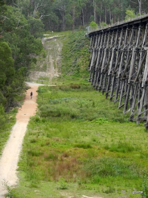 East Gippsland Rail Trail Victoria Australia. Bairnsdale to Orbost almost - 94km open. Road & MTB.