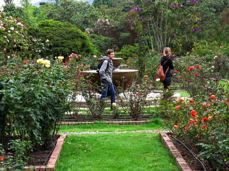 2 los visitantes del jard n bot nico caminan por la for Jardin botanico en sevilla