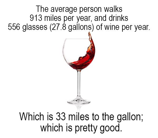 Wine MPG                                                                                                                                                                                 More