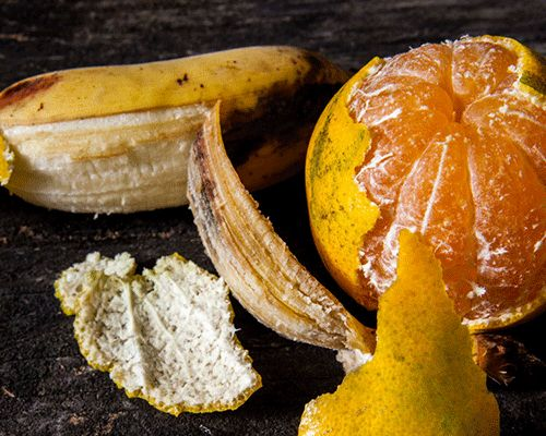 Ne jetez jamais les peaux de banane et les écorces d'orange !