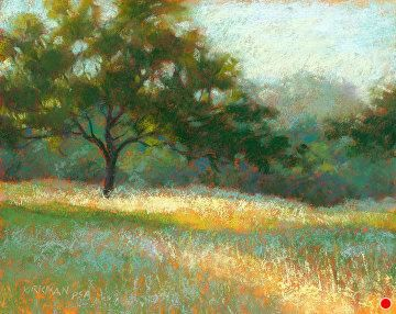 Third View from the Drive by Rita Kirkman Pastel ~ 8 x 10 inches