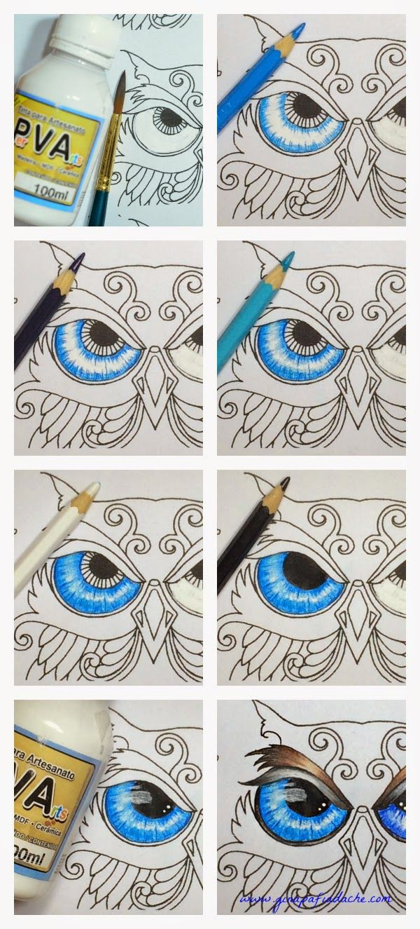 best 25 owl eyes ideas on pinterest beautiful owl owls and