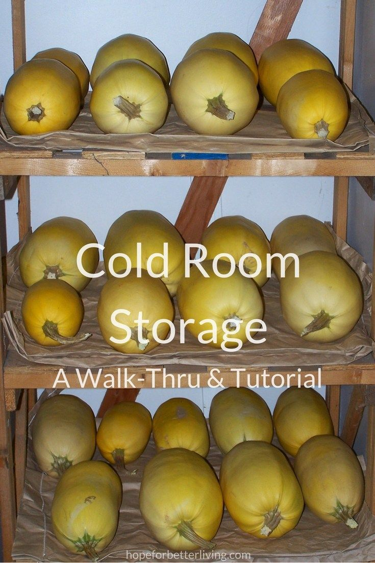 Not quite a root cellar, cold room storage is the next best thing! Let me walk you through our system!