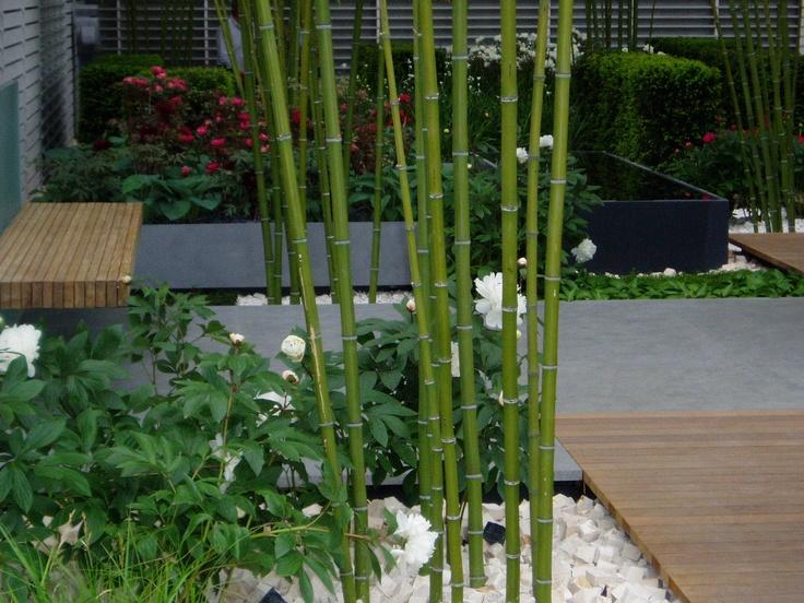 Chelsea Flower show 2005 Christopher Bradley-Hole garden