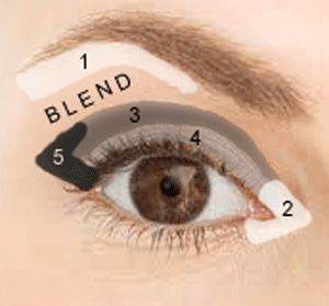 Where to apply eye shadow for a basic look. Use neutral colors for daytime and add darker color for #3 and #5 plus a dark liner above the upper lash line for evening. <3