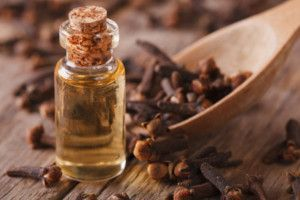 6 things you need to know about removing mould with clove oil. Find out why it works, key safety instructions, and why it's important to get to the source.
