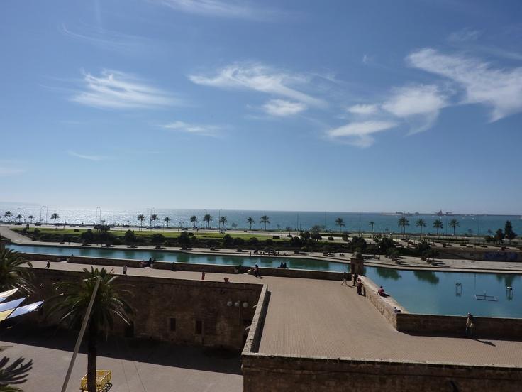 Con la Catedral de Palma de Mallorca en las espaldas tenemos una vista preciosa de su estanque, las palmeras y el mar.   Alquilar un coche en el aeropuerto de Mallorca: http://www.reservasdecoches.com/es/alquiler-de-coches/Aeropuerto_de_Mallorca.html