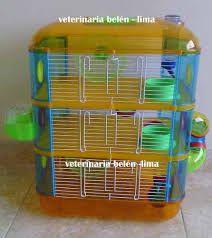 Resultado de imagen de jaula hamster ruso