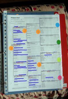 Organizing genealogy - best organization ideas i have found yet!