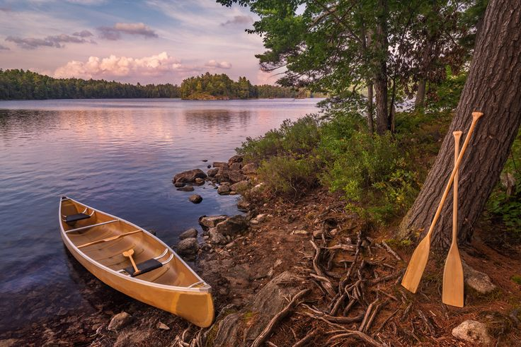 https://flic.kr/p/xtTcC6 | Cold Lake, Canoe and Paddles | A yellow canoe, with paddles propped up against a tree at our back country, island campsite on Cold Lake in Kawartha Highlands Provincial Park, Ontario.