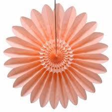 Afbeeldingsresultaat voor perzik kleur