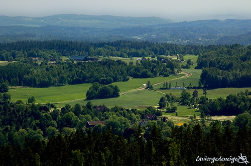 Rural Smaland, Sweden.  Where my ancestors (some of them) came from.